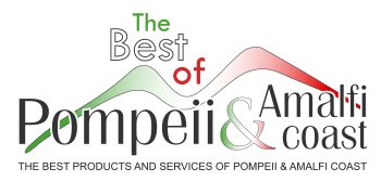 The best of Pompeii and Amalfi Coast Logo